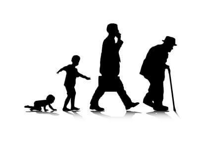 Schaubild der Generationen